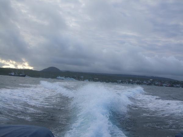 אמזונס ואיי גלאפאגוס 2012 267