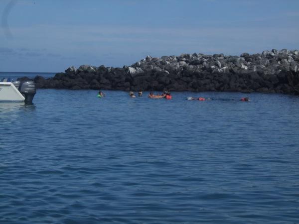 אמזונס ואיי גלאפאגוס 2012 536