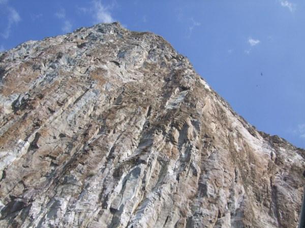 אמזונס ואיי גלאפאגוס 2012 598