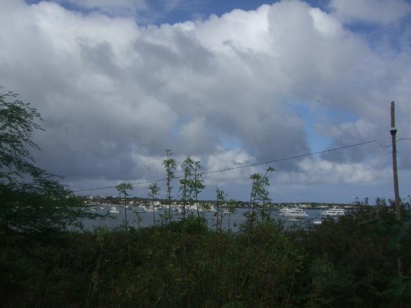 אמזונס ואיי גלאפאגוס 2012 609
