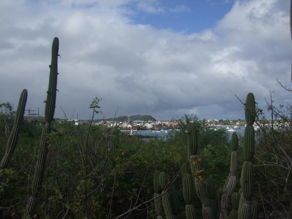 אמזונס ואיי גלאפאגוס 2012 613